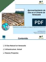 Aprovechamiento de Gas en El Oriente de Venezuela - Félix Romero -Foro Petroleo PLC 24-11-2015