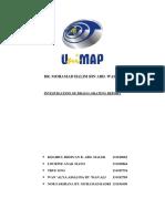 Report Optic SIAP