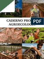 Caderno Pronaf Agroecologia Saf Mda 1