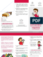 Triptico_Influenza.pdf