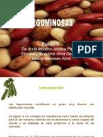 seminario -leguminosas-unam