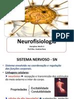 Aula 03 Neurofisiologia