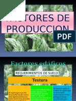Factores de Produccion Cultivo de Esparrago