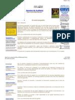 Apuntes de Auditoria (Control de Gestión)