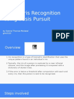 Robust Iris Recognition Using Basis Pursuit(3)