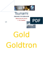 Tsunamiwarning Signs