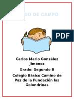 Diario de Campo Semana 1