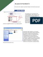 « Piratage de mot de passe de Facebook »