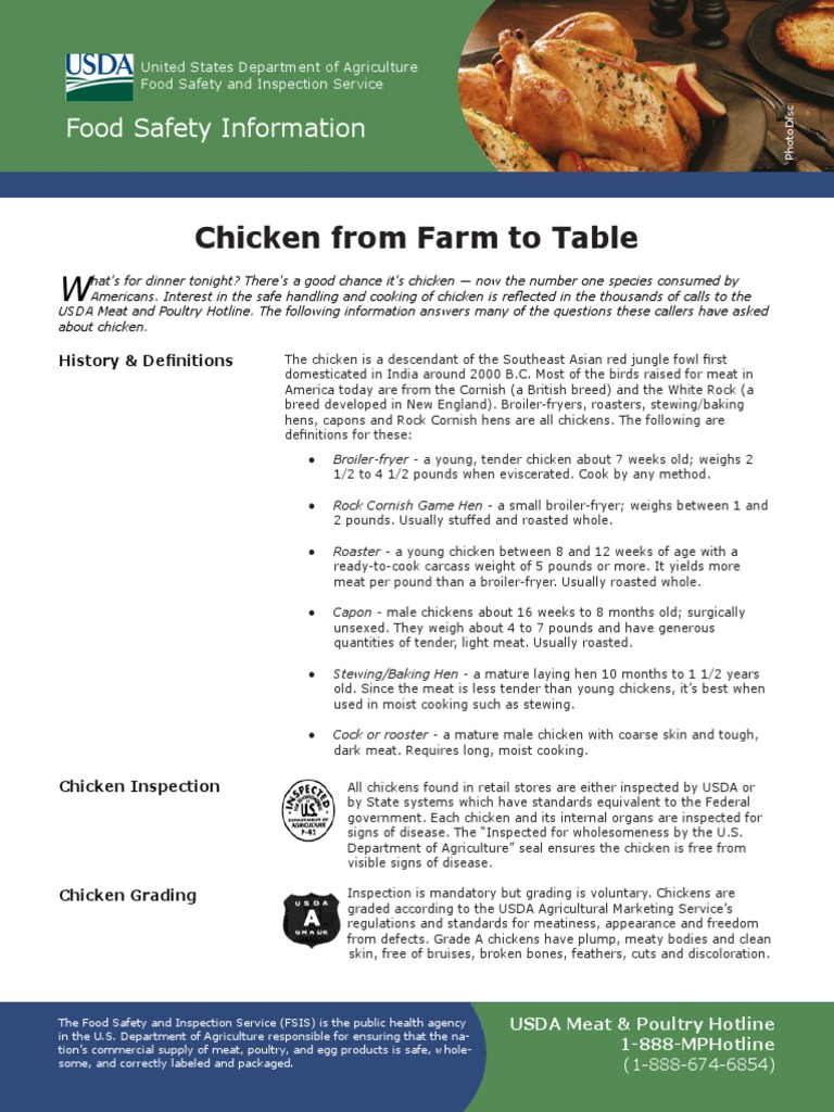 Chicken From Farm to Table | Foodborne Illness | Poultry