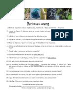 1-Cuestionario de Morfología Externa