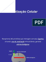 Aula de Sinalização Celular