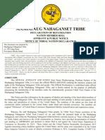 Mashapaug Affidavit - Public Notice Tribal Member Declaration
