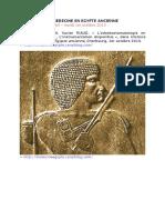 AP-Stomato_01_-_3_PDF