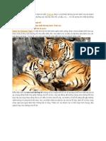 Những Bất Ngờ Thú Vị Tại Sriracha Tiger