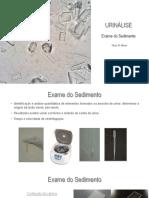 Aula sedimento urinário.pdf