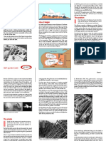 Opera House pdf