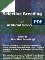 SelectiveBreeding-55962