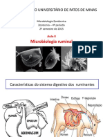 Microbiologia Do Rumen
