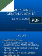 Tumor Ganas Genitalia Wanita