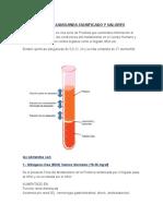 Quimica Sanguinea Significado y Valores