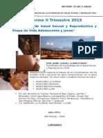 Informe IITrim -Essyr y Evaj 2015
