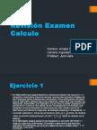 Revision Examen 1 Calculo