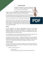 TUMOR-DE-WILMS.docx