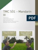 TMC 501 – Mandarin III