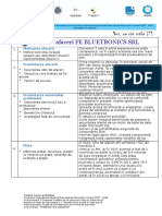 Plan de Afaceri Fe Bluetronics Srl