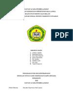 SAP Pendidikan Kesehatan Hipertensi Pada Lansia.docx