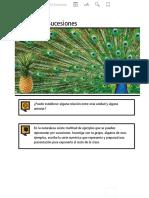 T3-Sucesións-3º ESO.pdf