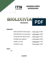 A 08 Biolixiviación