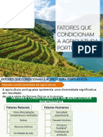 Fatores Cond. Agricult. Portug. II -15-16