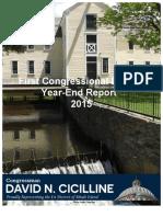 Cicilline Year-End Report