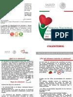 Diptico Dislipidemia 2015[1]