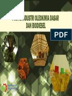 2. Profile Industri Oleokimia 2014