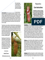 Nepenthes Care