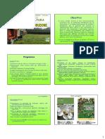 1 - Apicoltura_Introduzione 2013_2014