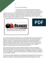 Article   Brangus (4)
