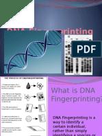dnafingerprinting-120523131022-phpapp01