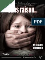 EXTRAIT du roman « Sans raison » de Mehdy Brunet
