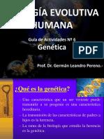 Clase Teórica Genética