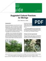 moringa_suggested_ways_of_cultivation.pdf