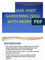 Square_Foot_Gardening_with_Moringa.pdf
