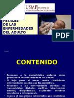 Origen Fetal 2013