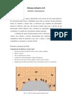 Sistema defensivo 6-0 - Um Modelo (www.paulojorgepereira.blogspot.com)