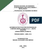 modelo de Informe Practicas Profesionales Apumayo...Final 3