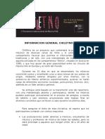 Formulario Ensamble Chiletno 2016