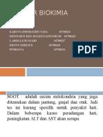 Triger Biokimia SGOT-SGPT