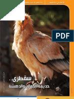 Yemenia Magazine 33 مجلة اليمنية